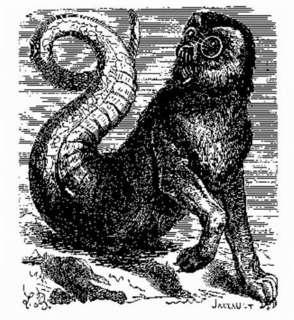 コラン・ド・プランシー著『地獄の辞典』の挿絵におけるアモンの姿.jpg